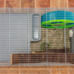 10 Best Hedgehog Cages - Everything You Need To Know